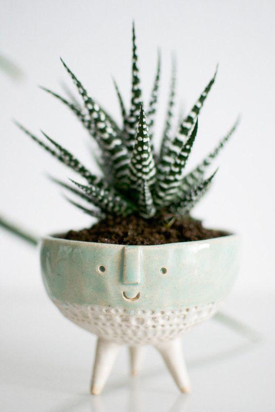 ghiveci plante verzi 2