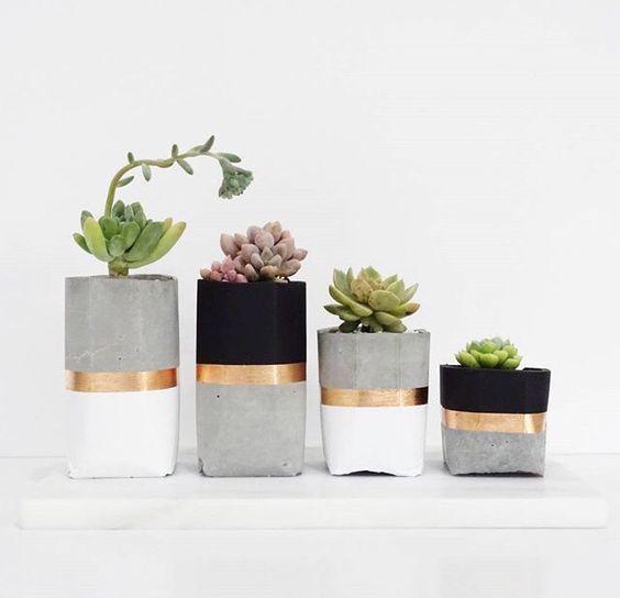 ghiveci plante verzi 5
